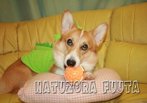 fuuta098132.jpg