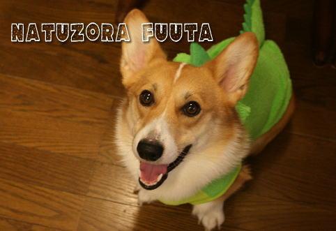 fuuta098133.jpg
