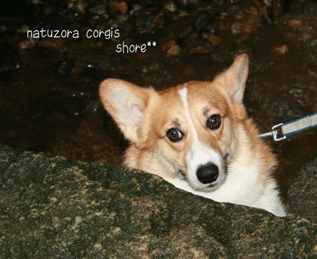 shore0907227.jpg