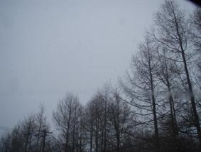 P3281095.jpg