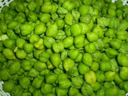 greengram1.jpg
