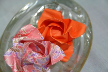 kawasaki-rose2.jpg