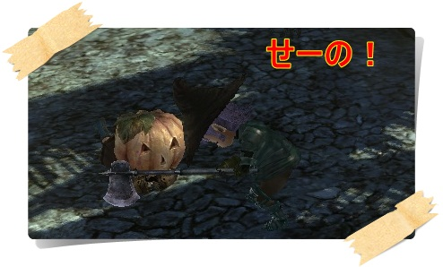 wo_20111106_010114.jpg
