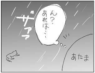 081101_02.jpg