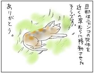 081101_04_20081103205741.jpg
