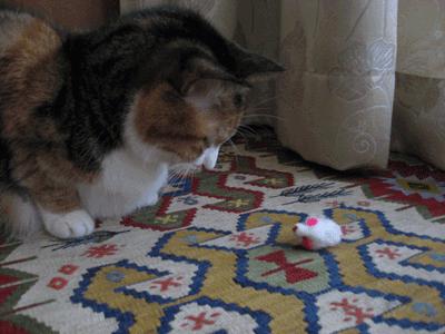 ベビーマウスとアンナ