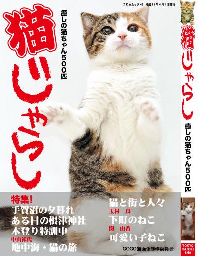 猫じゃらし表紙3A[1]..