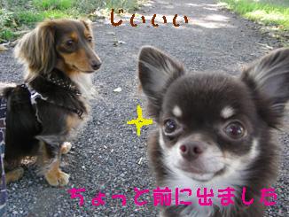 22_20081022224624.jpg