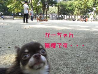 24_co.jpg