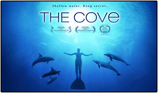 thecove11.jpg