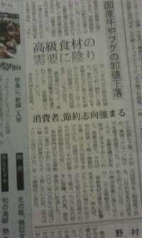 nikkei20081122.jpg