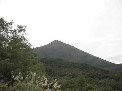 11PA0209.jpg