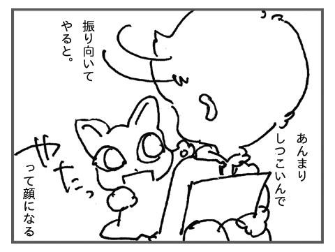 20080419_9.jpg