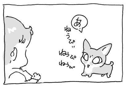 20080607_2.jpg