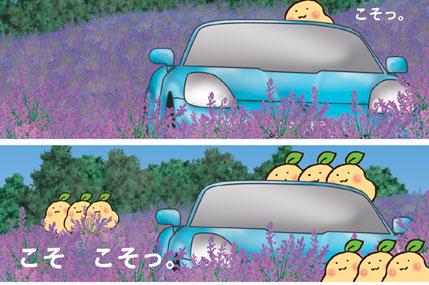 20080617_2.jpg
