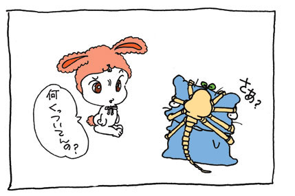 20080623_2.jpg