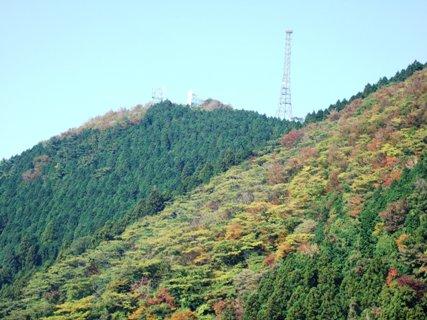 高縄山の紅葉