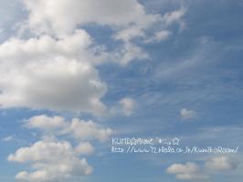 南の空.。o○