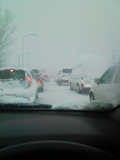 吹雪だよ楽しいな