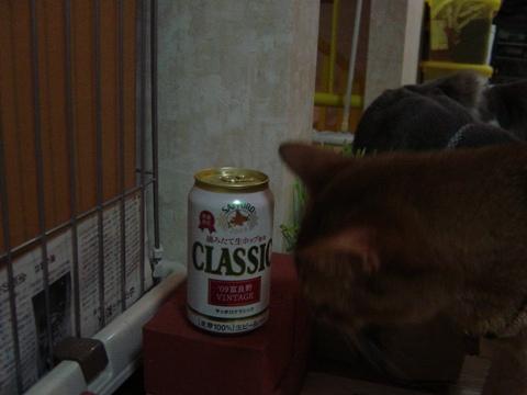 富良野缶1