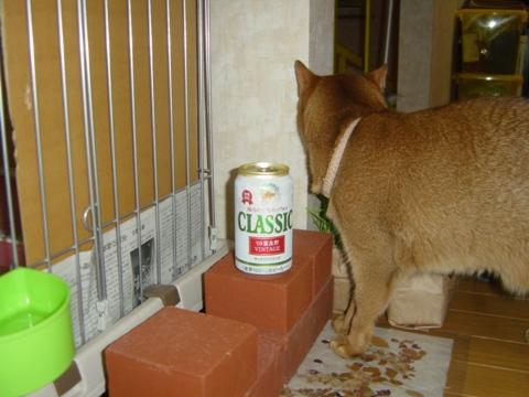 富良野缶2