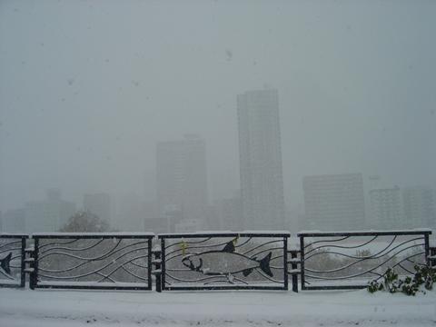 '11初冬4
