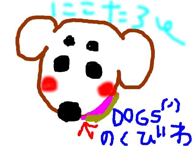 snap_nicotarounco_200865185530.jpg