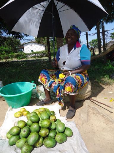 Mango seller, Kalomo, ZAMBIA