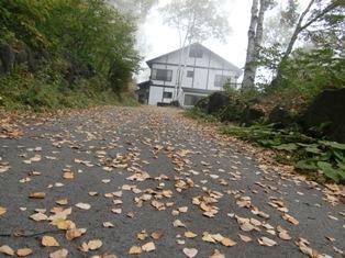 秋のこもれび山荘へようこそ(ブログ用)