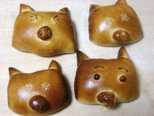 pig(ブログ用)