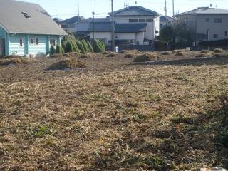 援農 大豆畑1
