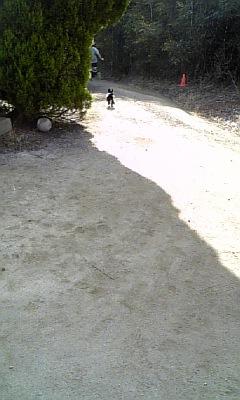 20090106002858.jpg