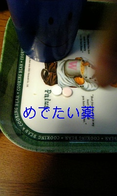 20090330124430.jpg