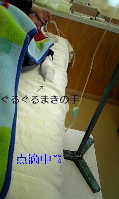 20090425203626.jpg