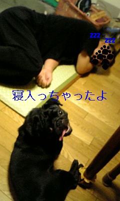20090718014633.jpg