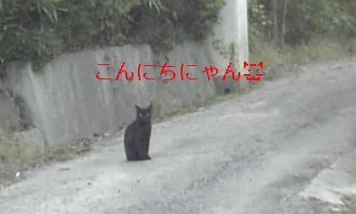 20090718015206.jpg