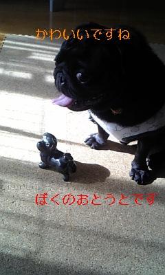 20091026145908.jpg
