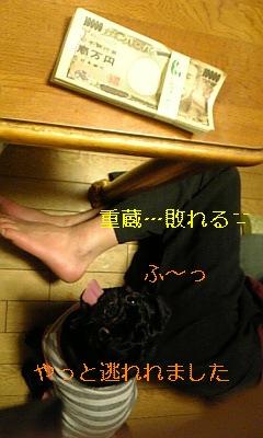 20091204082158.jpg
