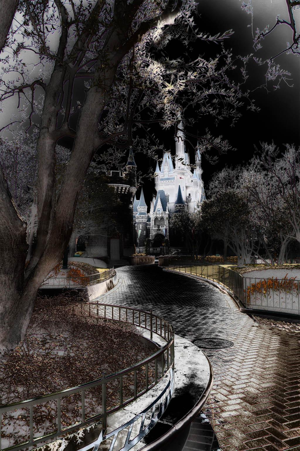 冬の夜の夢の中の森