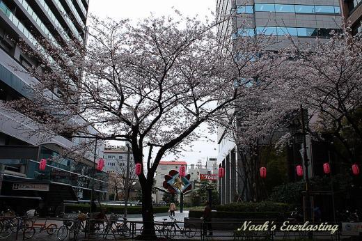 nakano_25.jpg