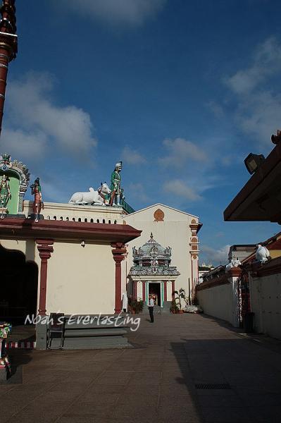 singa_chinatown_15.jpg