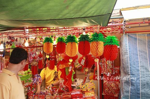 singa_chinatown_59.jpg