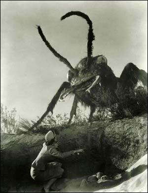 蟻が わ~