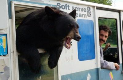 熊も・・・