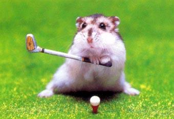ゴルフは儲かるマウス