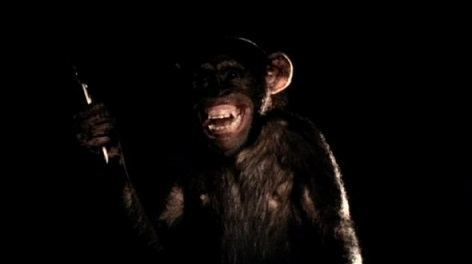 monkey d nobukatsu