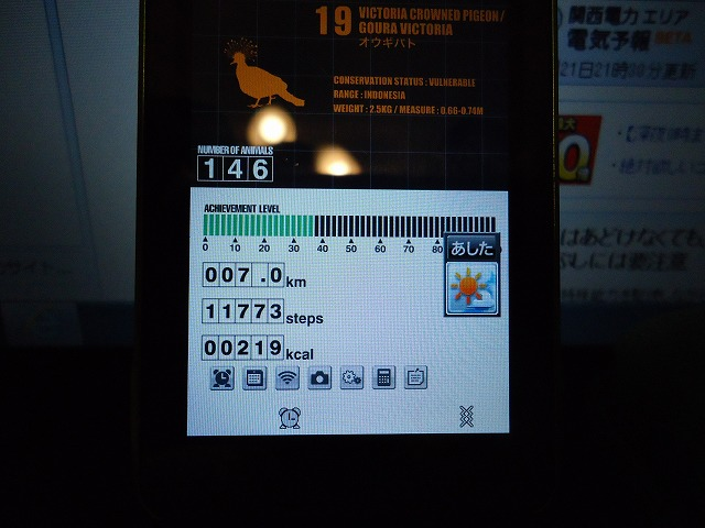 DSC07098.jpg