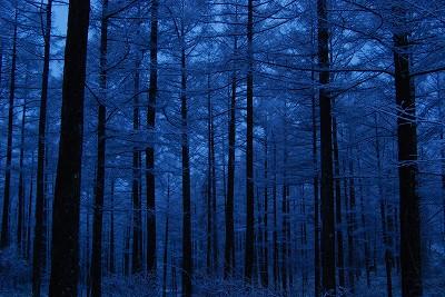 s-08年3月20日 黒斑山 (木)雪 D1 001