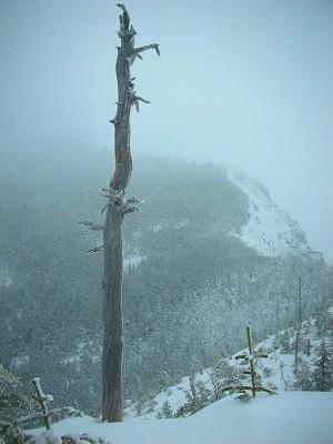s-08年3月20日 黒斑山 (木)雪  032