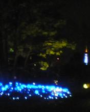 青いライトはなごみます